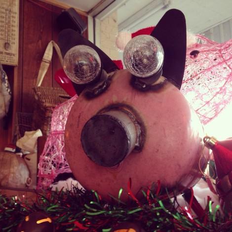 Goggles-Pig