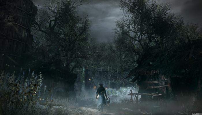 Forbidden_Woods