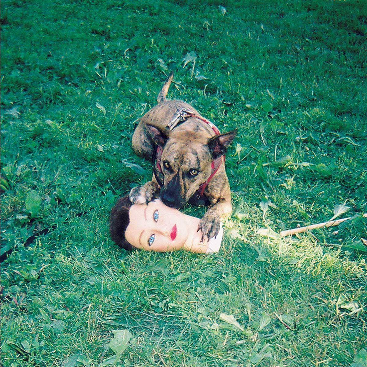 On Cody, Joyce Manor Get More Epic but Still Have Room to Grow